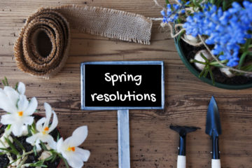 Spring resolution