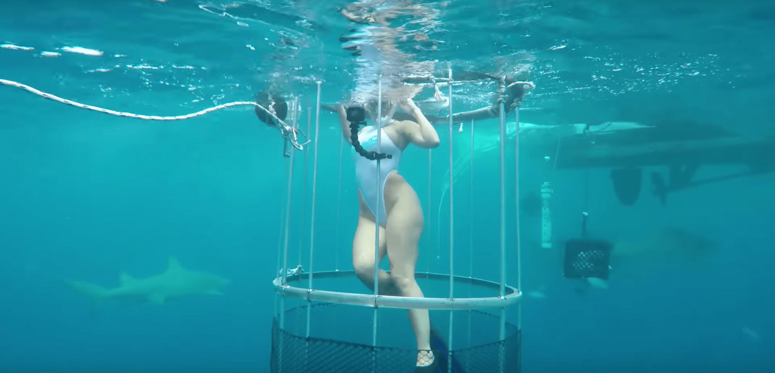 Movie shark adult, austin kincaid nude girl